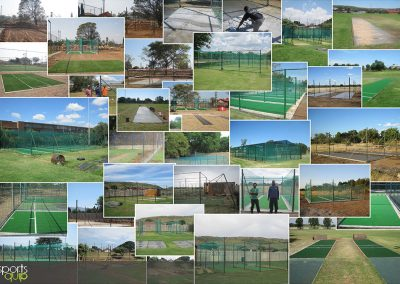 Cricket Collage